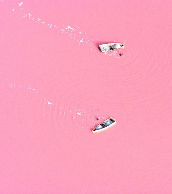 Theres a lake called Lake Retba in Africa with pink water.  It is also known to have very high salt content which causes you to be able to FLOAT in the PINK WATER. Goals.