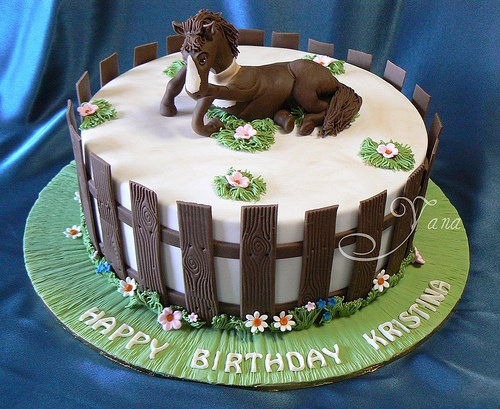 horse birthday cakes - chocholate fencing
