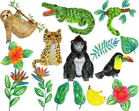 Watercolor Jungle Clipart Jungle Clipart Jungle Animal Clipart