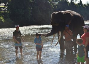 5 Reasons Kids Love Adventure Travel