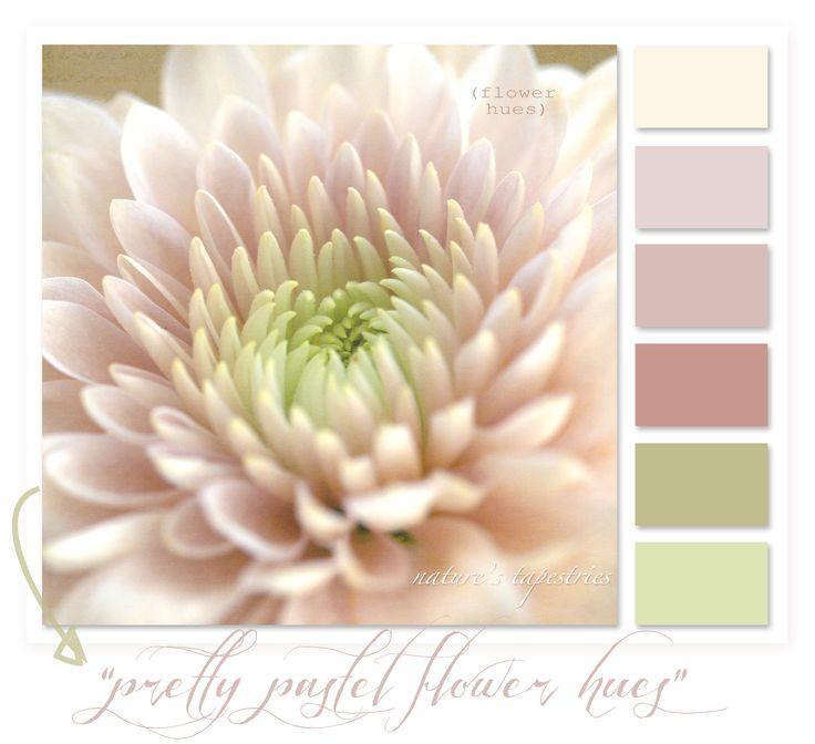 A pastel colour palette today