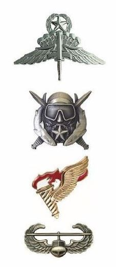 U.S.ARMY Special Forces Group U.S.ARMY Special Operations Command Badges Military Free Fall Jump Master Badge (1994; SOCOM) (1997; Army-wide) Special Operations Supervising Diver (2004) Pathfinder Badge (1964) Air Assault Badge (1974; 101st ABD) (1978; Army-wide)