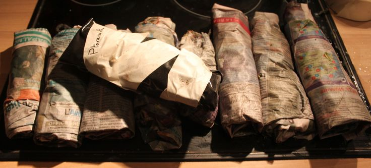 Les résultats du bouturage de rosiers papier journal-plastique  Publié le 12 avril 2014 par David Henriet