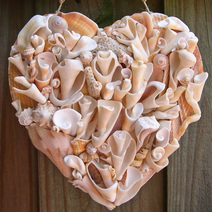 131 best images about seashell crafts on pinterest for Shell art and craft