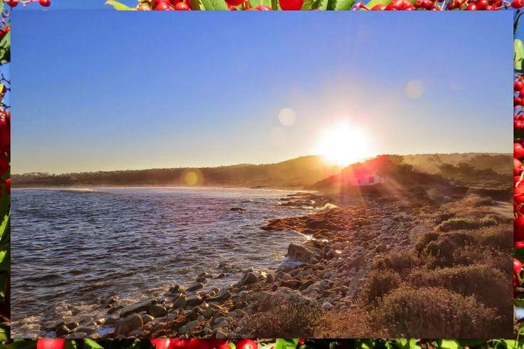 Sunrise in Monterey - 17-Mile Drive