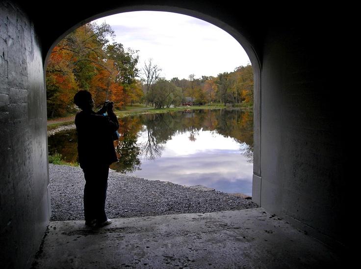Akron Falls Park - enjoying fall foliage with a friend