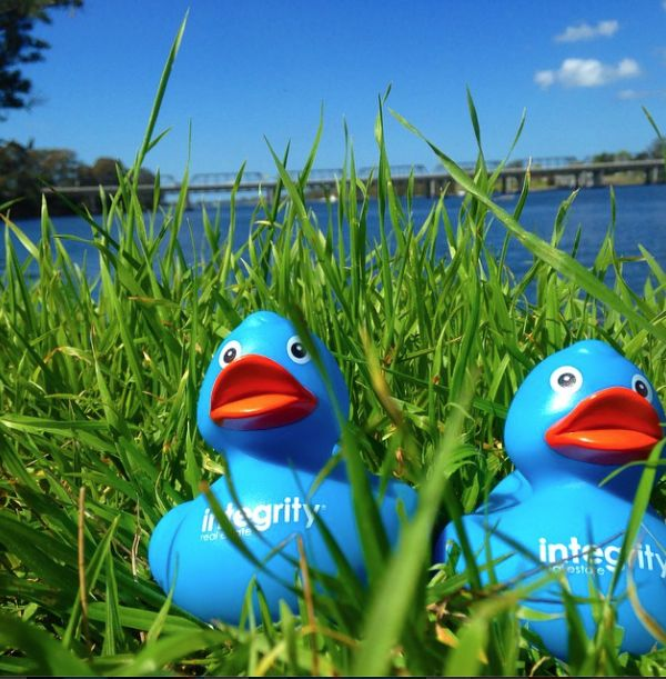 We are delighted to be a supporter of the 2014 #shoalhavenduckdash which is raising funds for #shoalhaveneducationfund. Head across to the website and buy your ducks ready for October 26.