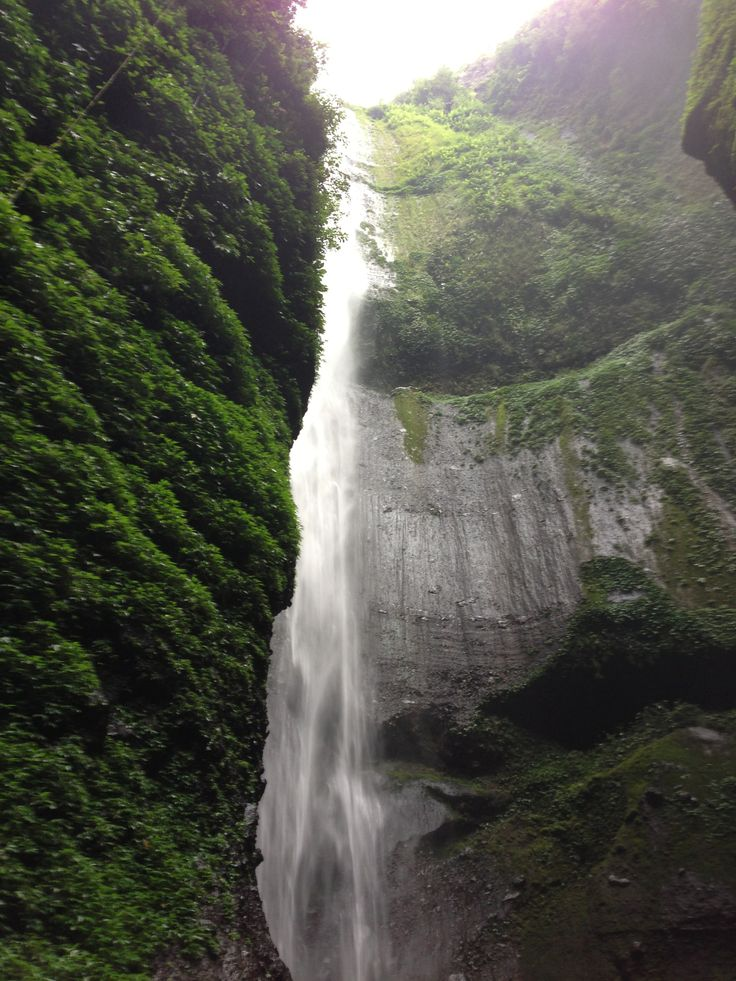 Waterfall of Madakaripura - Probolinggo, Jawa Timur ....  have nice trip with my friends ^^