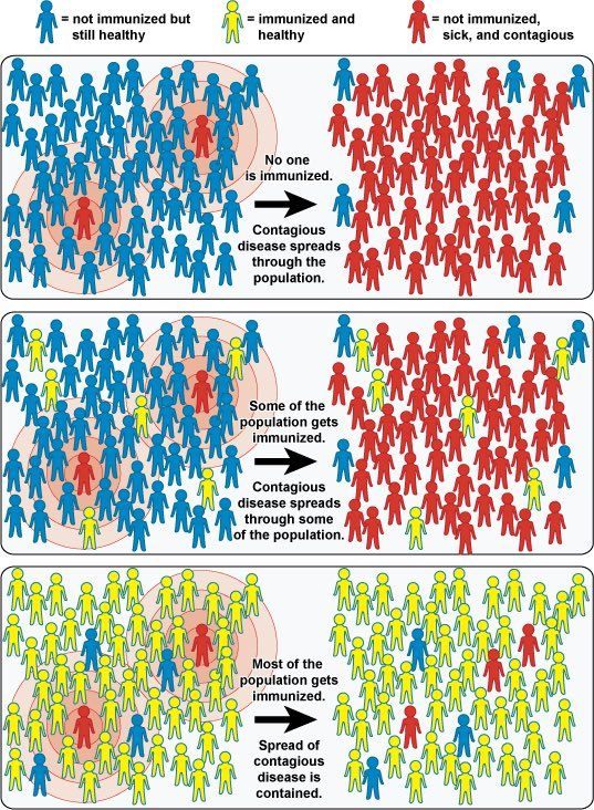 vaccineswork:  How vaccines work for a communityEver wondered why people talk about immunisation as being important for a community, as well as for an individual? The effect in question is called herd immunity, and it means that when a group is mostly immunised, those who can't get vaccinated are much better protected from harm since the disease isn't as easily passed on.Thanks to Dr Nathan Boostra for reminding us of this great graphic on Twitter!