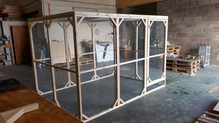 Large Rabbit Walk in Run. 9ftx6ftx6ft   Perfect for your bunny or Guinea Pig.  Handmade By Boyles Pet Housing.