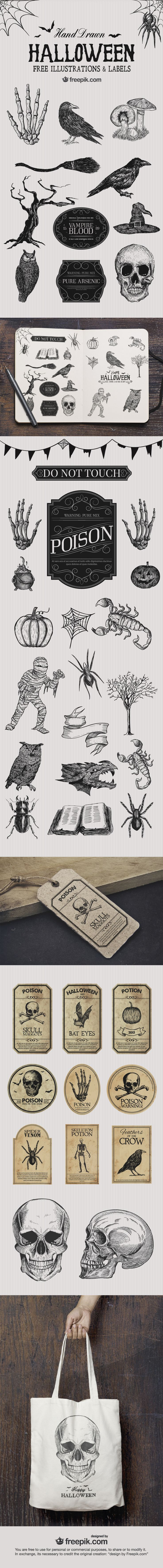 #Free Halloween Illustrations - Download Now!