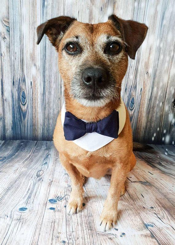 Dog Wedding Attire Dog Bow Tie Dog Wedding Bandana Dog Etsy Dog Wedding Bandana Dog Wedding Dog Wedding Attire