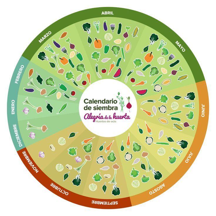 Resultado de imagen para calendario de siembra y recolección en mexico