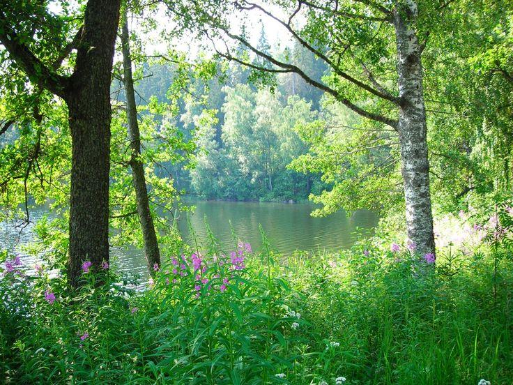 Järvi-Suomi / Finland with lakes