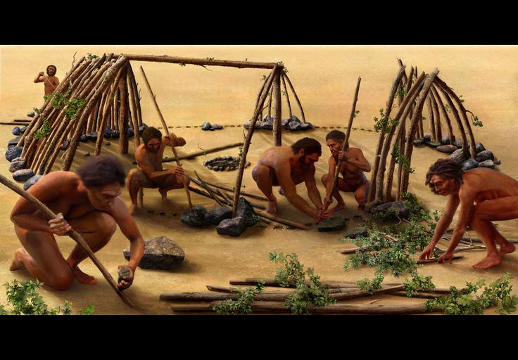 "An artistic rendering of the construction of the earliest known hominin-made shelter, discovered at a 400,000-year-old site in Terra Amata, France. When did human ancestors make the transition out of ""wildness""?"