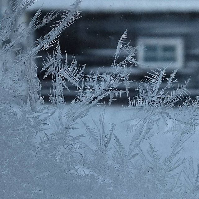 - 20 c Swedish Lapland  Copyright/Photo: Ateljén Katarina Nilsson