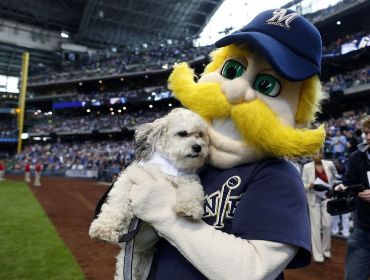 How Milwaukee Brewers' Hank the Dog Became The Happiest Mascot In Baseball [52 HQ Photos] | The Roosevelts --52 pics!