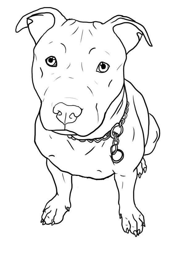 20+ Clip Art Of Pit Bull Boxer Mix Ideas and Designs