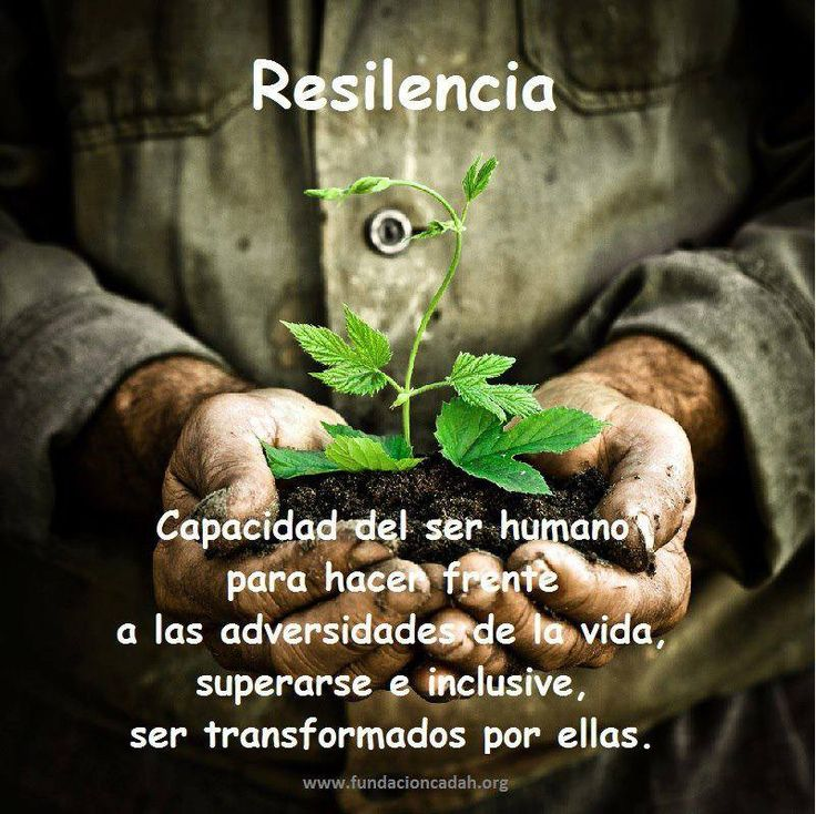 Resilince... Ones capacity to face life's adversities, overcome himself, and even become transforme by them.