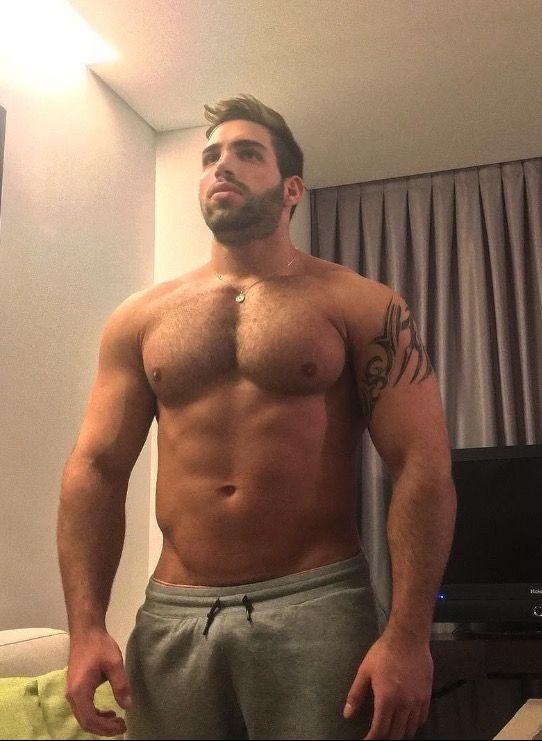Oso peludo hombre semental video