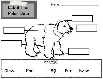 This packet includes 9 pages of polar bear fun! - Word Booklet - Pattern Practice - Coloring Page - Size Order Practice - Polar Bear Body Parts Labeling - Letter Puzzles - Seal Counting - Number Puzzles - Writing Practice