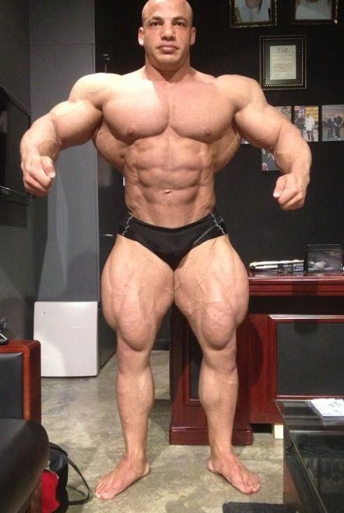 rich piana young - Google Search | ANATOMY | Pinterest