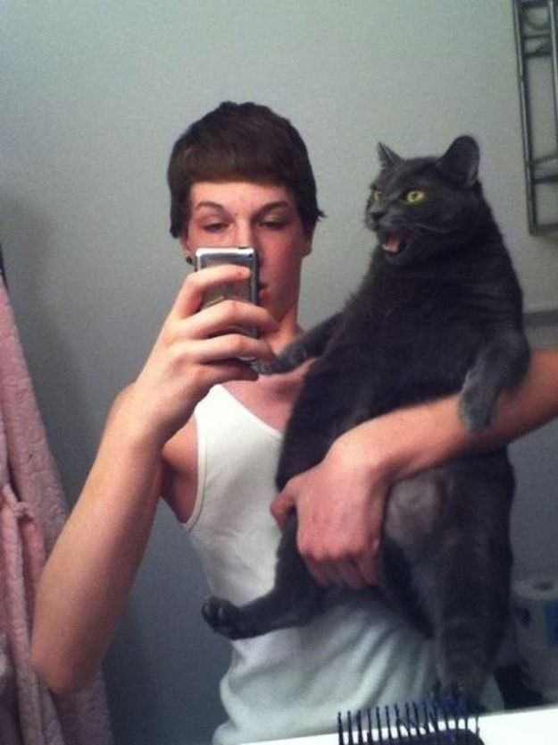 This cat who is tired of taking selfies with you | 22 Animals Who Are Getting Real Tired Of Your S***
