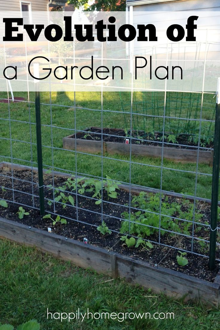 Our 2016 Garden Plan Is Amazing! See How We Will Grow 21