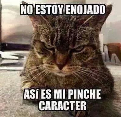 Humor meme español