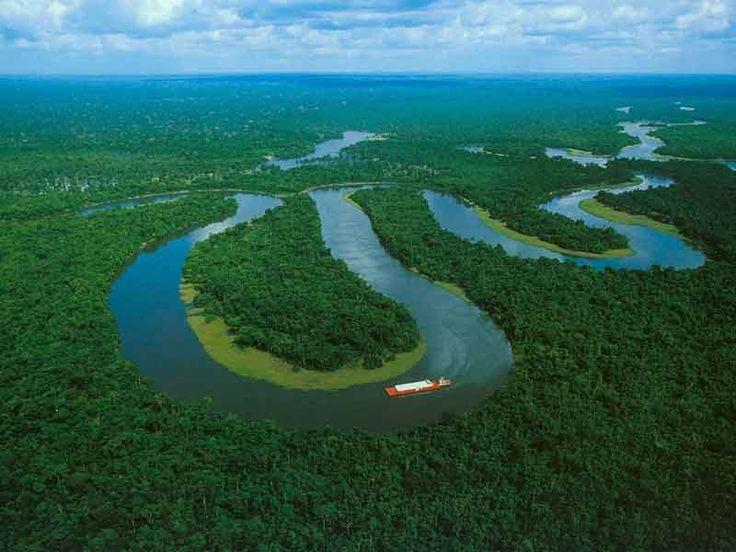 L'Amazzonia, nota anche come Foresta Amazzonica, è una foresta pluviale tropicale nel