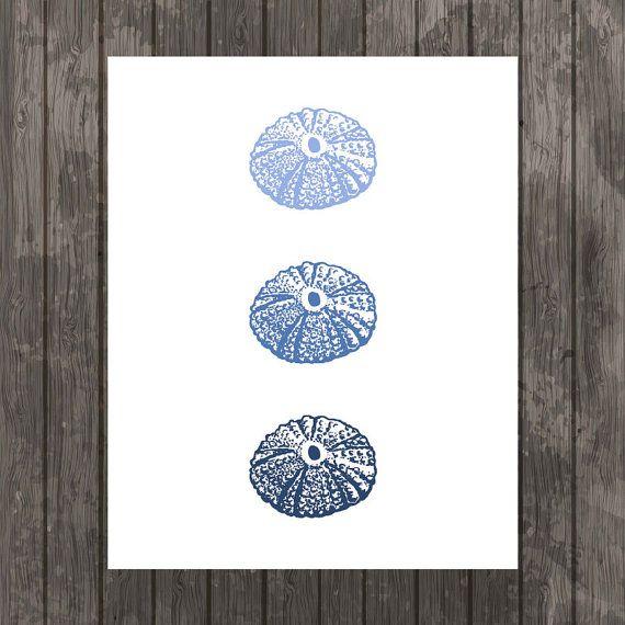 Three Sea Urchins in Indigo  Sealife  Wall Art by paper4download