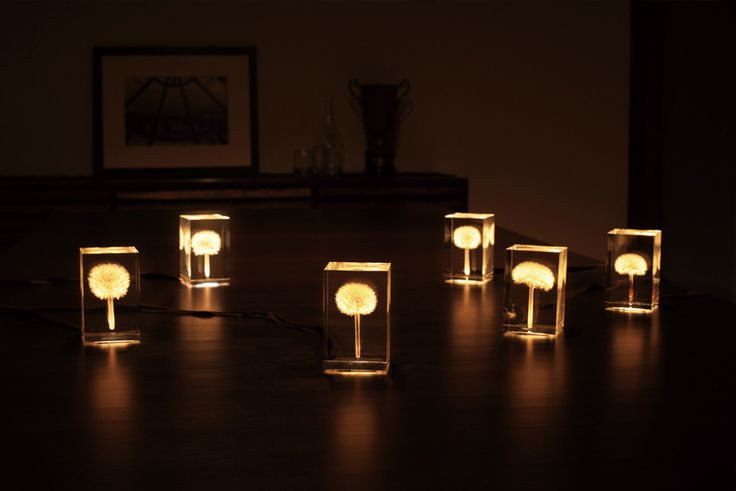OLED Dandelion Lights by Takao Inoue | Colossal