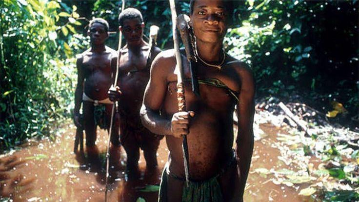 """""""Volarán las balas si vuelven al bosque"""": La familia Rothschild 'declara la guerra' a indígenas"""