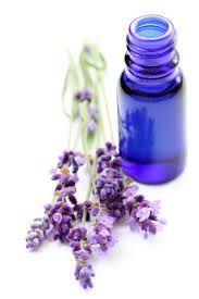 Hacer Aceite de Lavanda. Ingredientes: 1 taza de flores lavanda; 1 taza de vodka. Tener a mano 1 mortero, filtro y frasco.