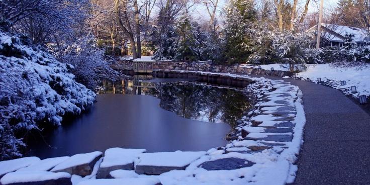 Dow Gardens Christmas - Midland, MI: Favorite Places, Gardens Christmas, Dow Gardens, Dow Garden S