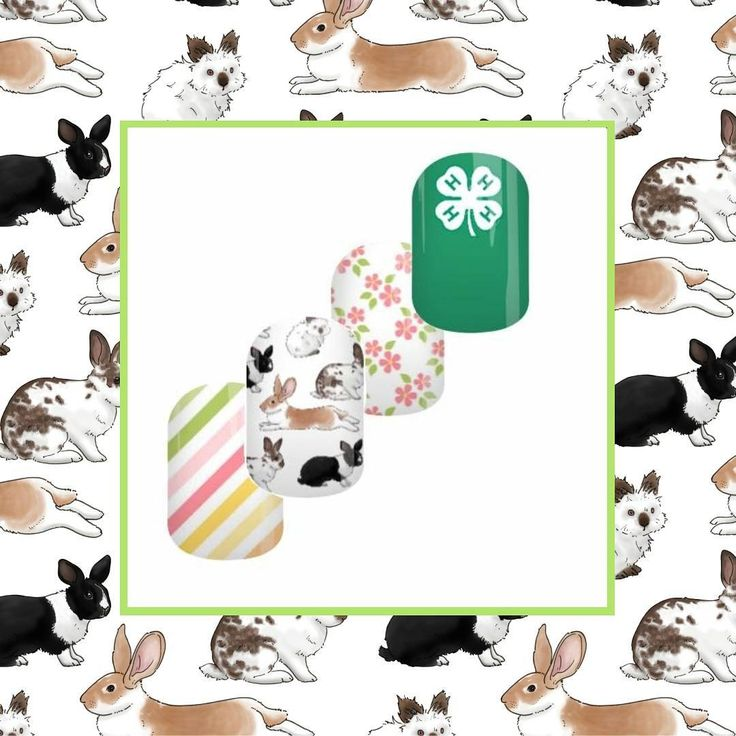 Here's a picture one of my customers sent me - she used my rabbits scrapbooking paper design in these nail wraps which she designed to fundraise for National 4-H (a youth development organisation in the US). You can find the nail wraps here: www.jamberry.com/us/en/shop/products/nas-1471538  #rabbits #rabbit #bunny #nailwraps #jamberrynails #illustration #customerphoto #designer #etsyseller #etsyseller