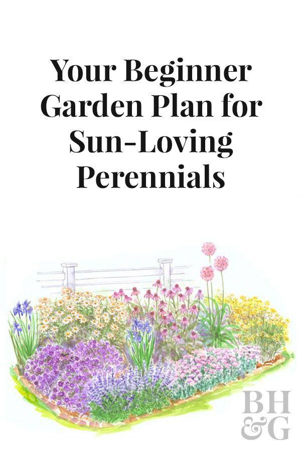 Beginner Garden For Full Sun Flower Garden Plans Gardening For