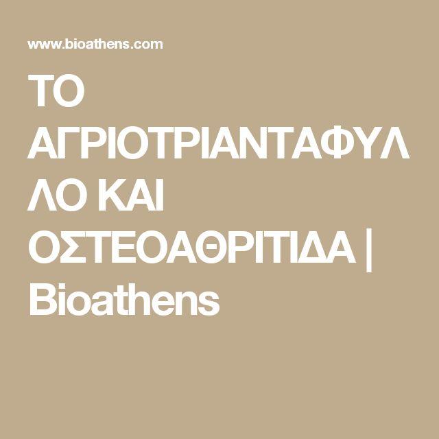 ΤΟ ΑΓΡΙΟΤΡΙΑΝΤΑΦΥΛΛΟ ΚΑΙ ΟΣΤΕΟΑΘΡΙΤΙΔΑ | Bioathens