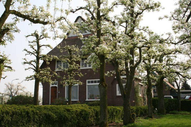Provincie Utrecht, Houten; Fraaie vakantievilla te huur. Leuke accommodatie om een korte vakantie in Nederland door te brengen.