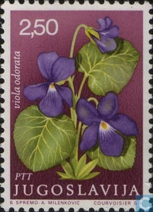 Yugoslavia: Medicinal plants, Viola odorata - (Plantas medicinais, Violeta selvagem) 1969