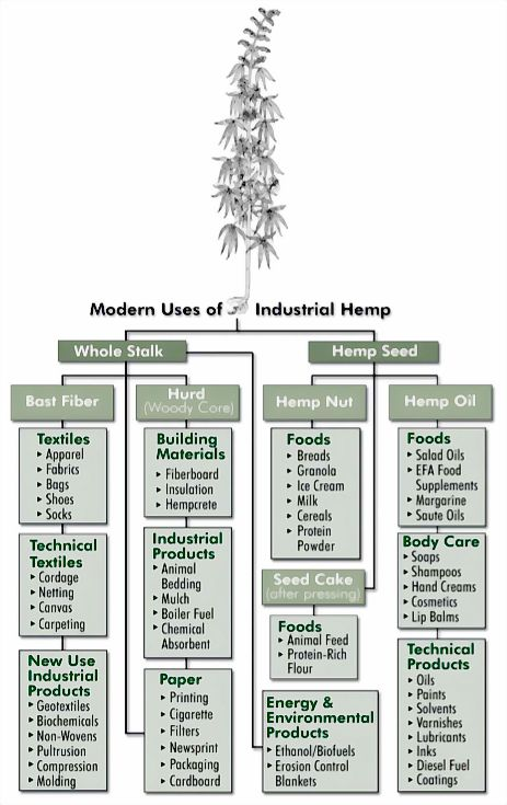 the uses and benefits of industrial hemp Herb resources: the many uses of hemp hemp is a variation of the cannabis sativa plant - a natural fiber product that is used for many industrial purposes over thousands of years.