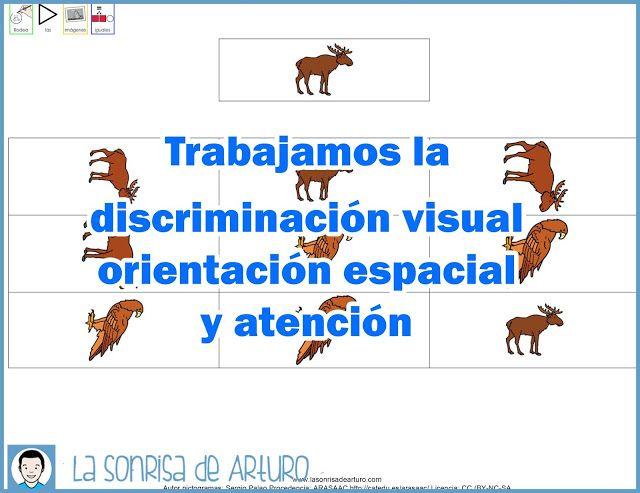 Trabajamos la discriminación visual, la orientación espacial y la atención.