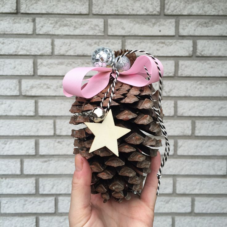 Mega pinecone for Christmas