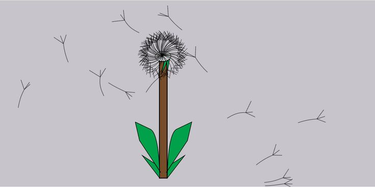dandelion, CSS animation