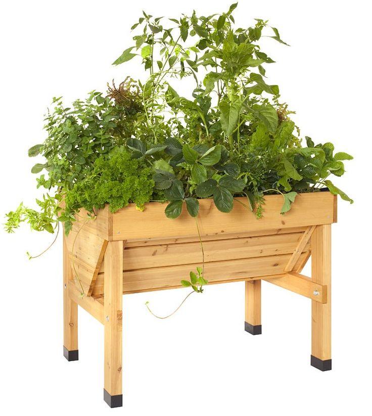 VegTrug Raised Garden Planter | Eartheasy.com