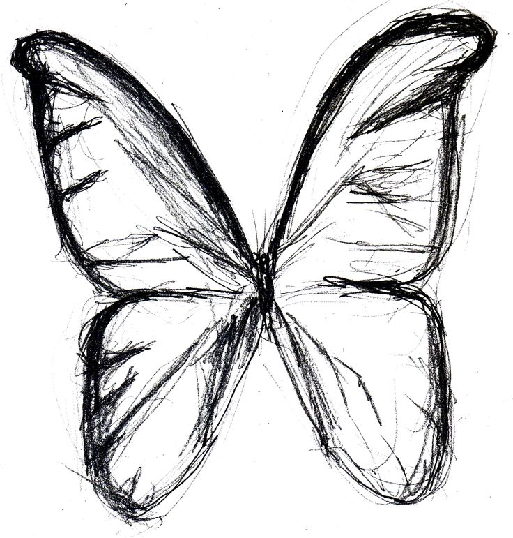 Simple Butterfly Drawing: Butterfly Sketch By ~eMokid64 On DeviantART