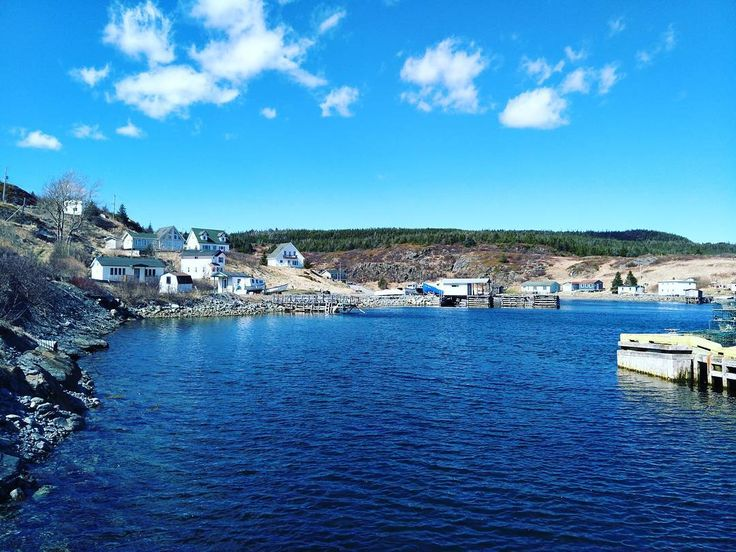The town of Brigus South #scenic #canada #newfoundland #water #seashore #sea #travel #traveling #visiting #instatravel #instago #harbor #sky #town #beach #house #outdoors #tourism #landscape #bay #boat #vacation #city #ocean #watercraft #architecture http://tipsrazzi.com/ipost/1508220033636432510/?code=BTuRiE0Bvp-