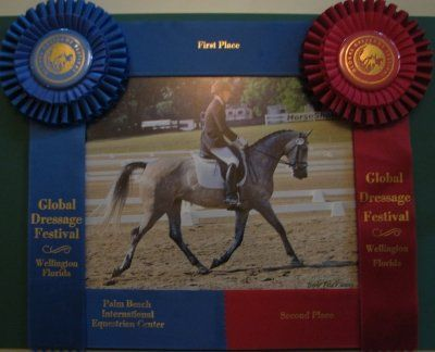 Horse Show Ribbons Make a Unique Picture Frame
