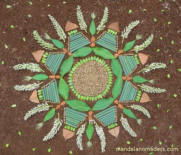 Mandala Art Medium: ~~seed balls, tiny evergreen leaf, buckeye leaf, marsh grass stalk, earth rock, underside of magnolia leaf and budding buckeye blossom on a brown earth canvas~~