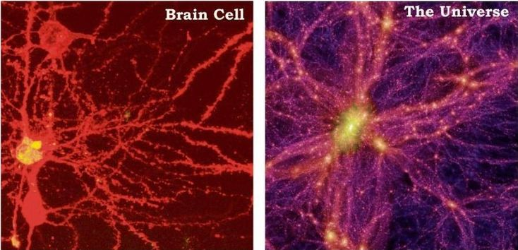 Source: www.spiritscienceandmetaphysics.com | Original Post Date: December 11, 2014 – We often speak of the universe being a reflection of ourselves, and point to how the eye, veins, and brain cells mirror visual phenomenon in the natural universe. As above so below right? Well check this out. How about the idea that the universe is …